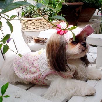 ノンノ  シーズー / ♀ 体重:6.8kg  【charie】小花柄コサージュ付きキャップ+小花柄シャーリングワンピース  タレ耳35サイズ+35サイズ着用 (※以前のモデルのためキャップは完売しております。 ワンピースに関しては、お問い合わせください。)  小顔さんのノンノちゃん。花柄のセットアップがとってもよくお似合いです☆  I.M.GALLERY blog charieモデル犬紹介~シーズーのノンノ~